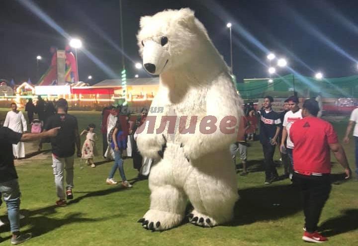 Big Bears Show in Saudi Arabia!